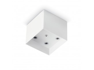 CUP - MSP5 SQUARE